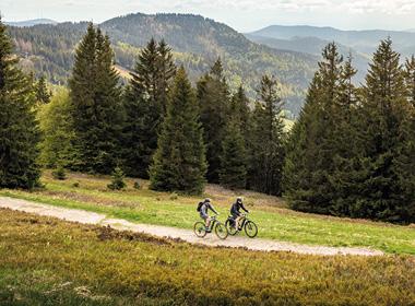 FOCUS Bicicletas MTB Rígidas Eléctricas